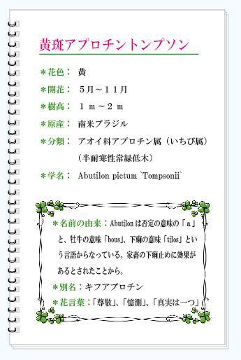 アプロチンMEMO.JPG