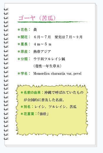 ゴーヤ花MEMO.JPG