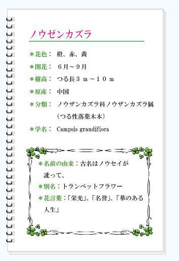 ノウザンカズラMEMO.JPG