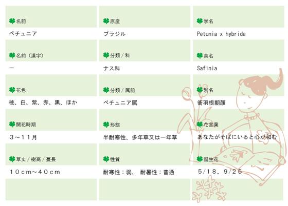今日の花MEMOペチュア560.jpg