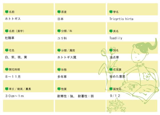今日の花MEMOホトトギス560.jpg