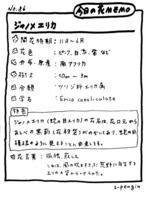 86ジャノメエリカMEMO.jpg