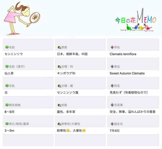 今日の花MEMOセンニンンソウのコピー.jpg