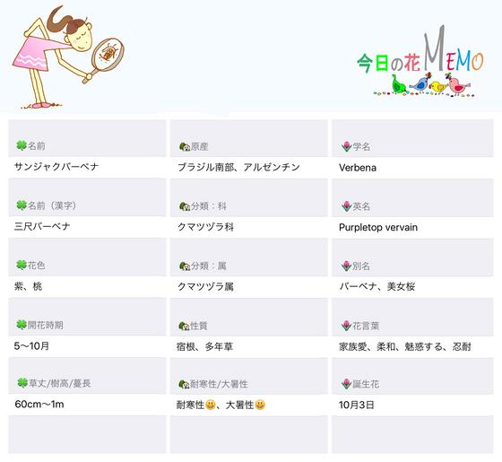 今日の花MEMOバーベナのコピー.jpg