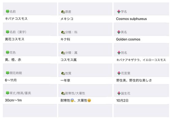 今日の花MEMO黄花コスモスおっきい.jpg