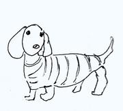 犬14.jpg